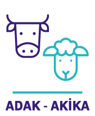 Adak - Akika